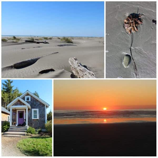 Seabrook Photo Collage