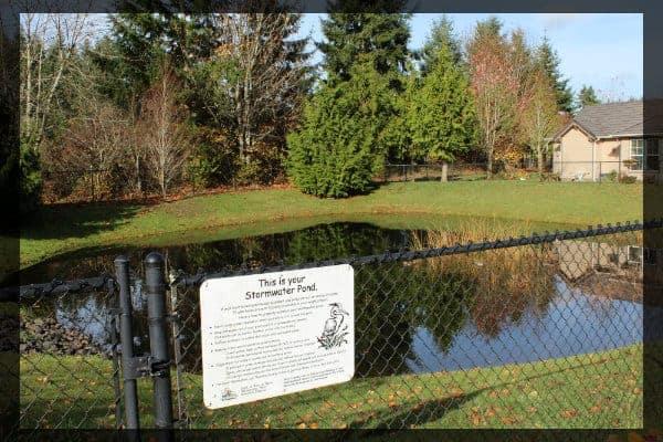 Stormwater pond in Olympia WA