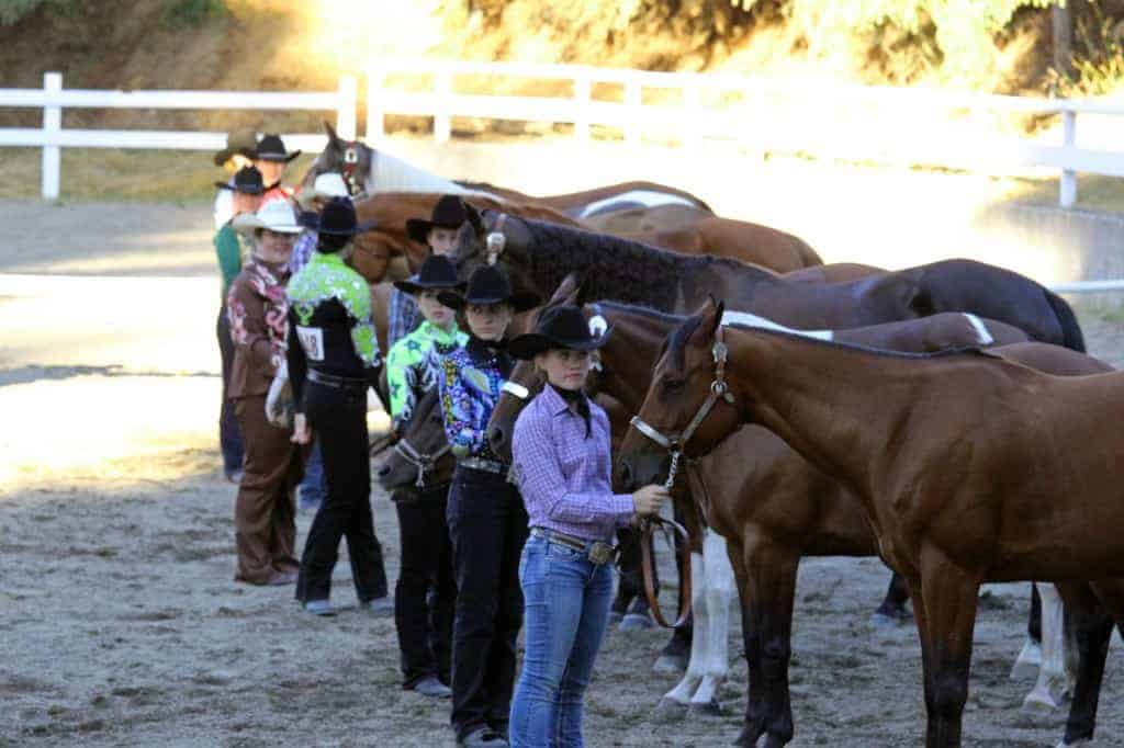 Horse line at the Thurston County Fair